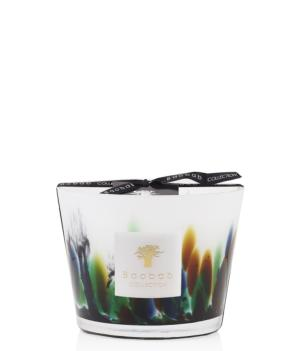AMAZONIA - Candle Max 10 / BAOBAB Collection